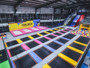 How to Make Success for Trampoline Park?